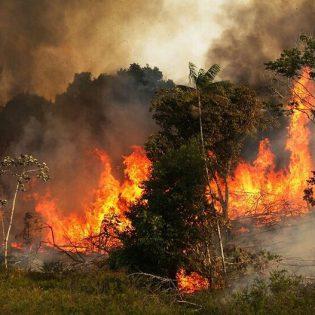 آتش سوزی جنگل های زاگرس